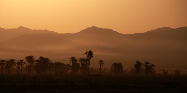 Wonderscope – la traversée des déserts