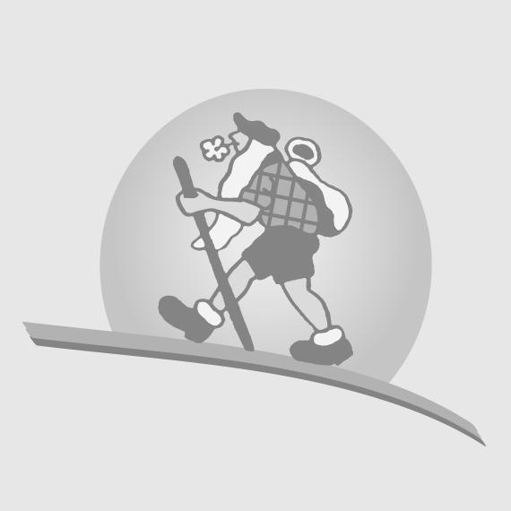 SOK SPLITBOARD HARD BOOTS - PLUM