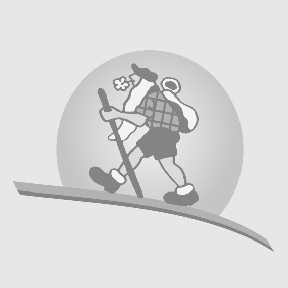 BATON SKI ALPIN TACTIC JR - GREY