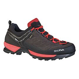 CHAUSSURE D APPROCHE WS MTN TRAINER GTX