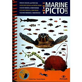PICTO MER ROUGE