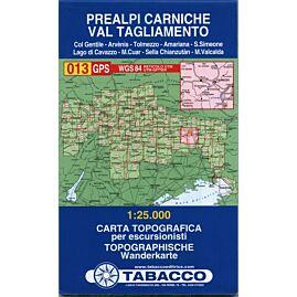 13 PREALPI CARNICHE 1 25 000