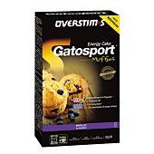 GATEAU GATOSPORT MUFFINS AUX MYRTILLES