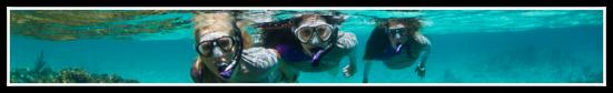 bandeau_header_eau_plongee-3