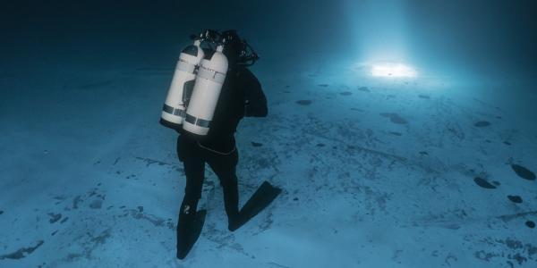 Glacialis : une plongée sous la glace